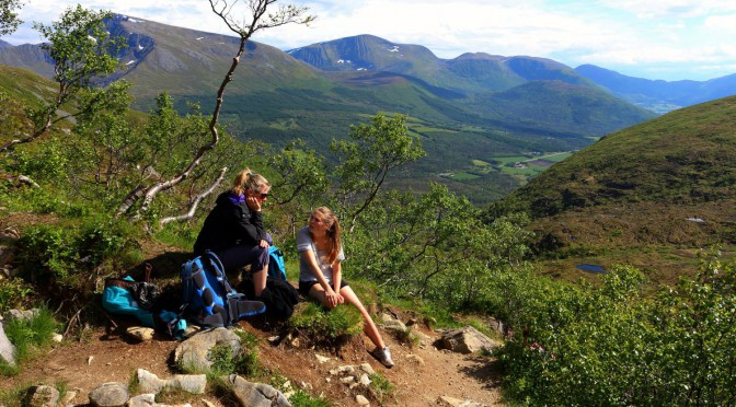 Birkenkrøll og den norske turen