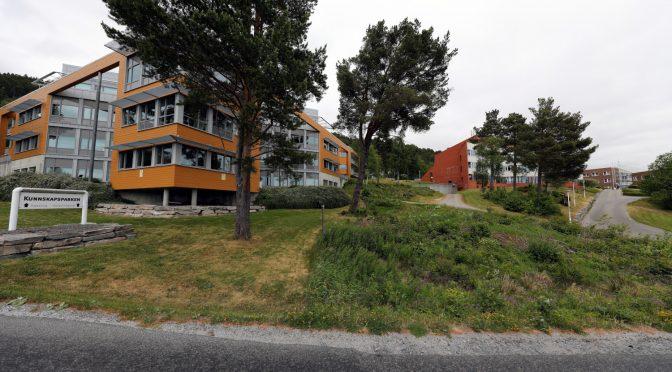 Innovasjonsbyen Molde og høgskolen