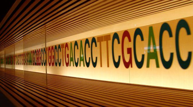 Hvem eier dine gener?